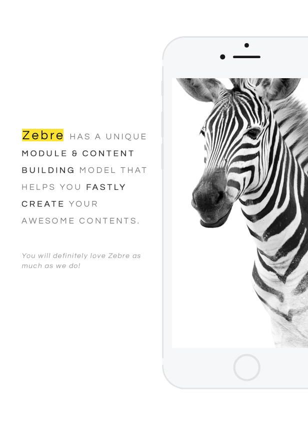 Zebre - Minimal Portfolio WordPress Theme For Freelancer & Agency - 9